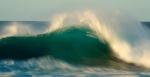 la ola verde