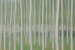 Homage to Touluse-Lautrec