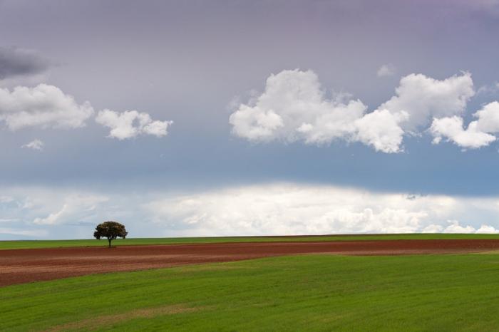 Koldo Badillo · Lo mismo llueve